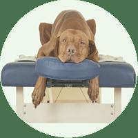 Fortbildung Massage