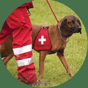 Ausbildung Arbeits-/Sporthundetherapeut/in